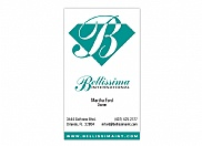 Bellissima International needed printed marketing materials for the new company and we designed them around our initial logo design and colors.