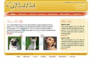 Graphical mockup of web site redesign for The Pawsh Pooch.